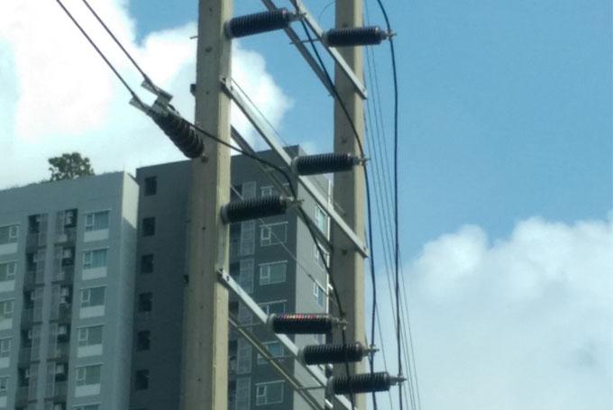 Electrical Insulators Business   Asian Insulators Public